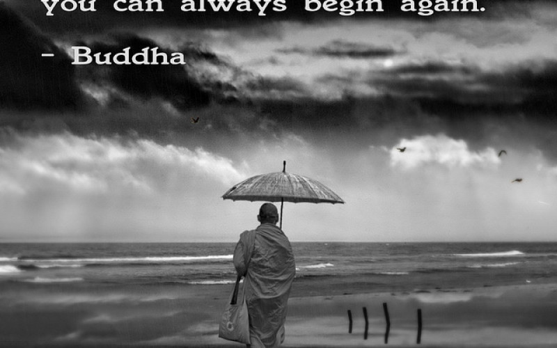 Zen Quotes On Life Fascinating Life Quotes Sayings Images In Hindi In Tamil Tumblr In English